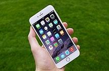 Apple bắt đầu cho đổi iPhone 6 Plus hỏng lấy iPhone 6s Plus mới