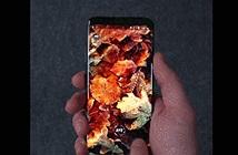 Bộ sưu tập hình nền chất lượng cao tuyệt đẹp dành cho smartphone