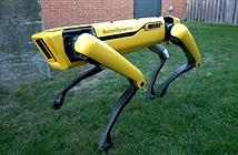 Robot giờ cũng biết ga lăng: Giữ cửa nhường nhau đi qua