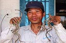 Dị nhân Việt Nam: Người đàn ông mang móng tay quỷ suốt 35 năm