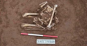 Hài cốt người không đầu quỳ trong mộ cổ hơn 3.000 năm