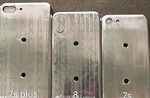 iPhone 8 sẽ nhỏ hơn iPhone 7s Plus và lớn hơn 7s