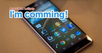 Xepria Z2 - Z3 bắt đầu nhận được bản cập nhật Android 5.1 Lollipop