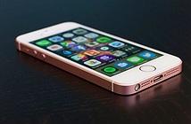 Apple đang mất vị trí dẫn đầu, chỉ còn 1 bảo bối đáng giá