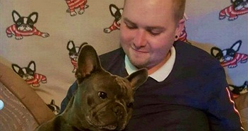 Chủ mắc ung thư qua đời, chó trung thành ra đi cùng lúc