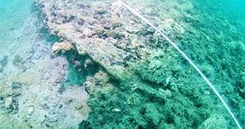 Phát hiện tàn tích xưởng thuyền 8.000 năm chìm dưới đáy biển