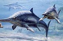 Tham ăn, loài bò sát biển cổ đại chết trong đau đớn