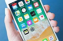iPhone 8 vẫn sống tốt trong màn tra tấn khủng khiếp