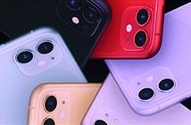 iPhone 11 vẫn là lựa chọn phổ biến hơn iPhone 11 Pro và 11 Pro Max