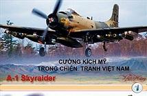 """Infographic: Khám phá """"giặc nhà trời"""" trong Chiến tranh Việt Nam"""