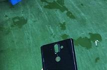 Xuất hiện nắp lưng Nokia 9: thấy rõ camera kép và cảm biến vân tay
