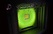 Lá nhân tạo biến ánh nắng thành nhiên liệu