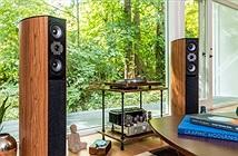 Jamo D 590 Special Edition - Huyền thoại âm thanh Đan Mạch trong tầm tay