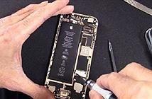 Tại sao Apple không cho người dùng tự sửa chữa iPhone?