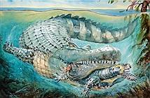 Chân dung loài cá sấu khổng lồ dài 8m, nặng như voi