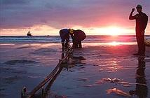Đã đến lúc nên nói lời chia tay với tuyến cáp quang biển AAG?
