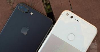5 yếu tố giúp Google Pixel XL thắng thế trước iPhone 7 Plus