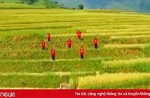Bài mẫu viết thư UPU lần thứ 49 năm 2020: Thông điệp Tự hào Việt Nam