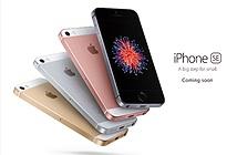 Đến lượt iPhone 6s tuột giá không phanh