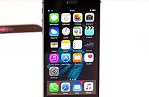 Tổng hợp cấu hình dự kiến của iPhone SE 2