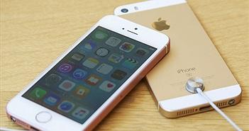 iPhone SE mới ra mắt tháng sau, không có giắc cắm tai nghe