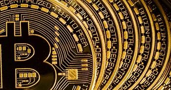 """Giá Bitcoin Cash tụt quá sâu, Bitmain ra lời kêu gọi thợ đào """"đốt"""" đồng tiền mã hóa này để đẩy giá lên"""