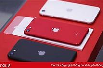 iPhone SE 2020 về Việt Nam với giá từ 12,7 triệu đồng
