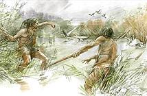 Gậy gỗ 300.000 năm tuổi dùng để săn động vật