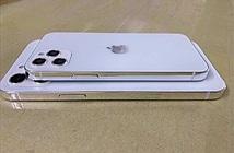 Lộ thiết kế mặt sau iPhone 12