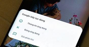 Người dùng Android Việt kêu trời vì điện thoại lỗi hàng loạt