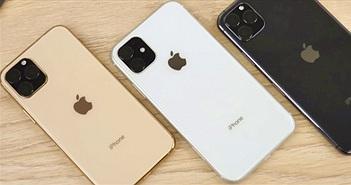 Top 10 iPhone vinh dự được cập nhật lên iOS 13