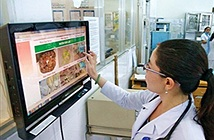Đà Nẵng: Tìm giải pháp ứng dụng CNTT cho ngành y tế