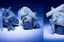 Công nghệ in 3D tham gia vào quá trình phẫu thuật tim