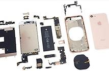 Bên trong iPhone 8 có gì?