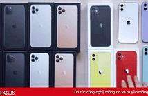 Mặt lạnh như tiền đập hộp tất cả 14 bộ iPhone 11: YouTuber giật giải ngầu nhất tuần là đây!