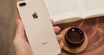 iPhone 7 Plus, 8 Plus và iPhone X hút khách ở phân khúc giá từ 10 triệu