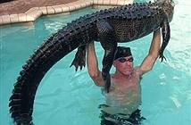 Thấy cá sấu trong bể bơi, người đàn ông làm chuyện ai cũng khiếp...