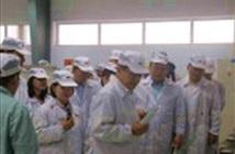 Đã có 38 DN phụ trợ tham gia chương trình tư vấn trực tiếp của Samsung