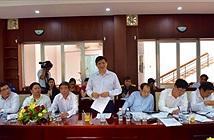 Nâng mức cảnh báo đối với phòng chống dịch bệnh do vi rút Zika tại Việt Nam