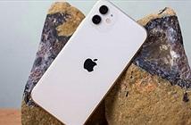 Người dùng lại thỏa thích mua iPhone 11 Pro từ Apple