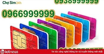 Tại sao SIM số đẹp không ngừng tăng giá?