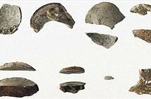 Phát hiện trứng hóa thạch của loài khủng long bí ẩn