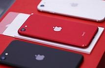 iPhone SE 2020 đã về VN với giá cao hơn bản phân phối chính thức
