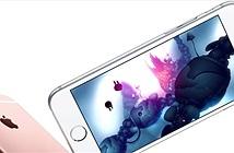 Apple tăng đơn đặt hàng màn hình OLED cho iPhone