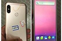 Rò rỉ Xiaomi Redmi 6: camera kép dọc, màn hình tai thỏ, ra mắt 31/5