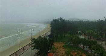 120 nhân viên FPT mắc kẹt ở đảo Cô Tô do bão Kujira