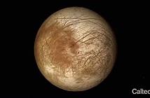 Các nhà khoa học tạo ra kính hiển vi ba chiều để tìm người ngoài hành tinh