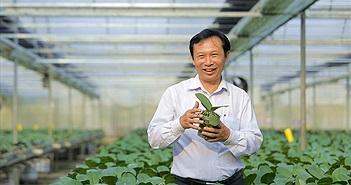 Xuất khẩu nông sản, cần chú trọng sở hữu trí tuệ