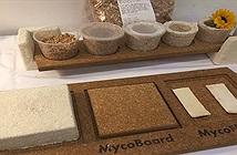 Công ty Mỹ sử dụng sợi nấm để sản xuất đồ nội thất
