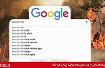 Tìm đám cháy rừng Amazon trên Google, kết quả cho ra toàn... máy tính bảng
